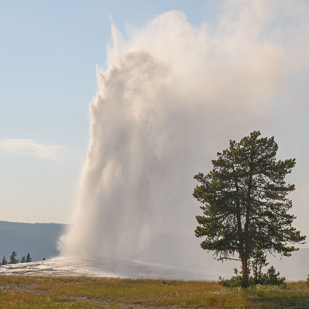 Yellowstone / Old Faithful